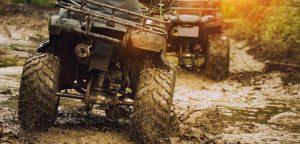 Kør på ATV gennem skovene